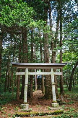 naganohara0I9A5249_TP_V4