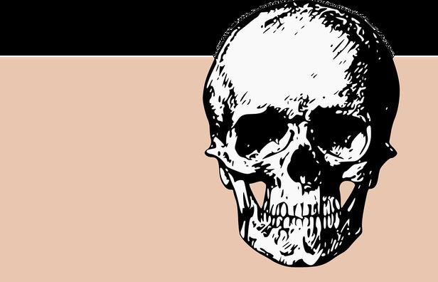 bones-2025877_960_720